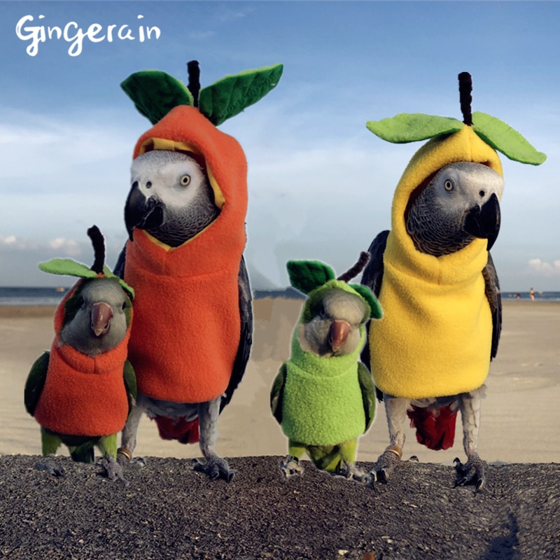 Gingerain Bird clothes Parrot clothes The Little Prince original hand-made custom bird clothes Hooded Sweater Fruit park