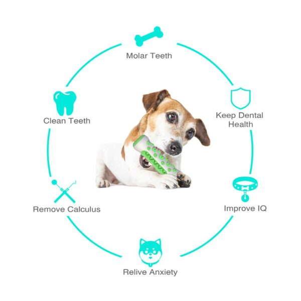 Dog Molar Toothbrush Toys Chew Cleaning Teeth Safe Elasticity Soft TPR Puppy Dental Care Extra-tough Pet Cleaning Toy Supplies