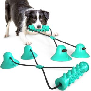 Pet Dog Toys Double Suction Cup Tug Chew Toy Dogs Push Ball Pet Tooth Cleaning Dog Toothbrush for Puppy Large Dog Molar Bite Toy